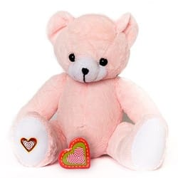 recordable ultrasound pink patch bear