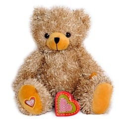 recordable ultrasound bear
